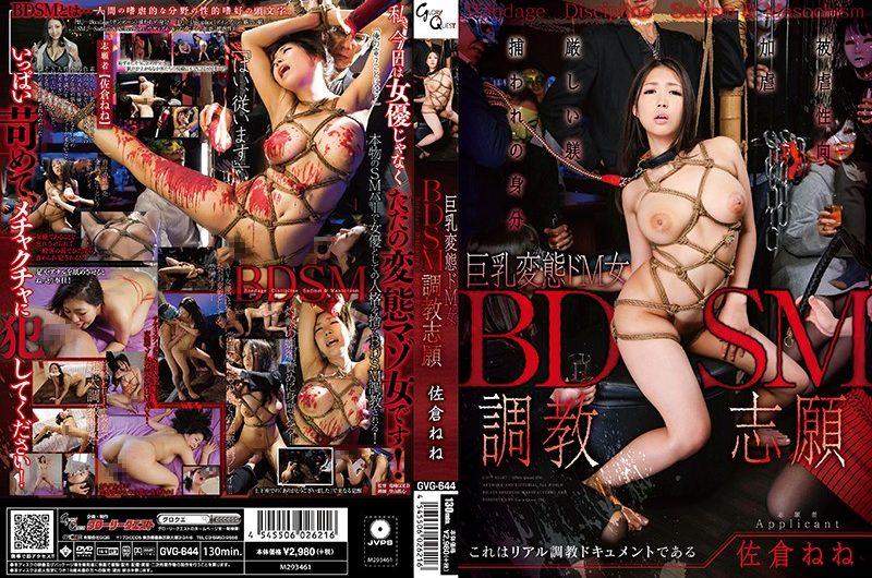 [GVG-644] BDSM調教志願 巨乳変態ドM女 佐倉ねね Tied GLORYQUEST 巨乳調教 辱め 895 MB
