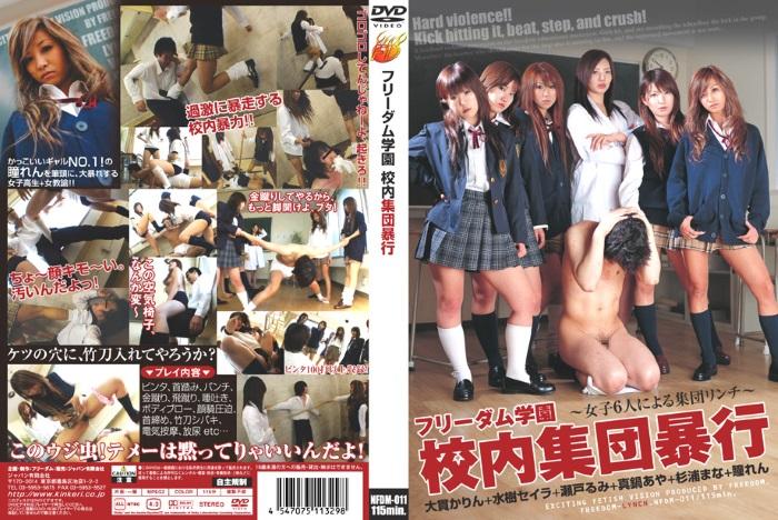 [NFDM-011] フリーダム学園 校内集団暴行 Ren Hitomi 水樹セイラ 瞳れん 1.18 GB