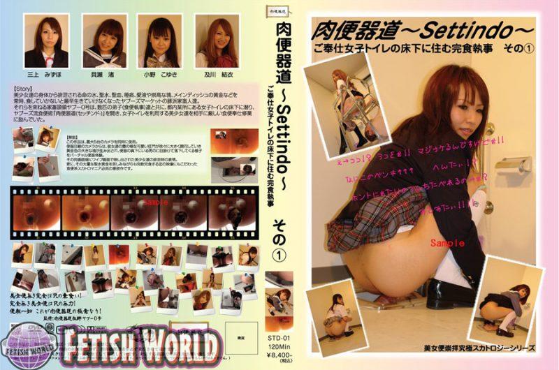 [STD-01] ご奉仕女子トイレの床下に住む完食執事 1 貝瀬渚 Scat Golden Showers 食糞 1.46 GB